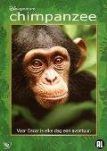 Bekijk details van Chimpanzee