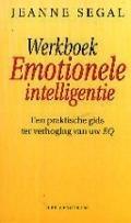 Bekijk details van Werkboek emotionele intelligentie