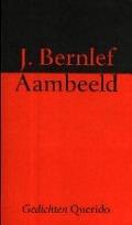 Bekijk details van Aambeeld