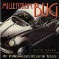 Bekijk details van De millennium bug