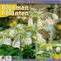 Bekijk details van Bloemen & planten; Dl. 3