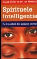 Bekijk details van Spirituele intelligentie