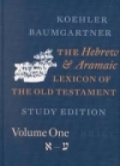 Bekijk details van The Hebrew and Aramaic lexicon of the Old Testament; V