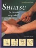 Bekijk details van Shiatsu in theorie en praktijk