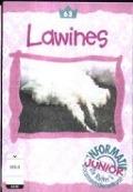 Bekijk details van Lawines