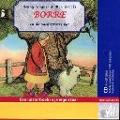 Bekijk details van Borre en de nachtzwarte kat
