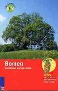 Bekijk details van Bomen herkennen en benoemen