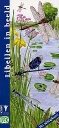 Bekijk details van Libellen in beeld