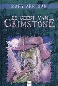 Bekijk details van De geest van Grimstone