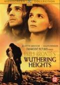 Bekijk details van Emily Brontë's Wuthering heights