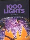 Bekijk details van 1000 lights; Vol. 1