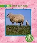 Bekijk details van Het schaap