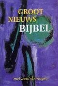 Bekijk details van Groot nieuws bijbel