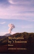Bekijk details van Wynfearren by 't lemieren