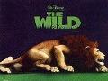Bekijk details van Disney's The wild