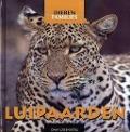 Bekijk details van Luipaarden