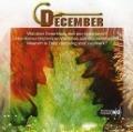 Bekijk details van December