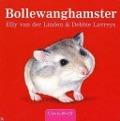 Bekijk details van Bollewanghamster