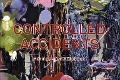 Bekijk details van Controlled accidents
