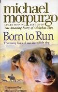 Bekijk details van Born to run