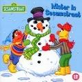 Bekijk details van Winter in Sesamstraat