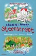 Bekijk details van Steenstraat