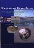 Bekijk details van Schelpen van de Waddeneilanden