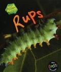 Bekijk details van Rups