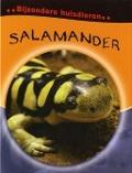 Bekijk details van Salamander