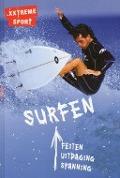 Bekijk details van Surfen