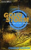 Bekijk details van Goudstorm