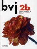 Bekijk details van BVJ; 2b havo.vwo