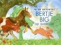 Bekijk details van Bertje Big op avontuur