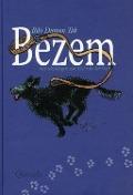 Bekijk details van Bezem