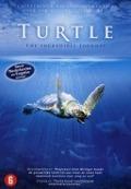 Bekijk details van Turtle