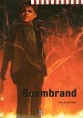 Bekijk details van Boombrand