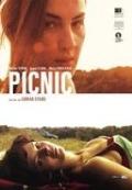 Bekijk details van Picnic