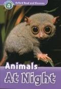 Bekijk details van Animals at night