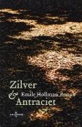 Bekijk details van Zilver & antraciet