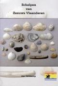 Bekijk details van Schelpen van Zeeuws Vlaanderen