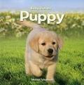 Bekijk details van Puppy