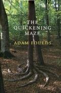 Bekijk details van The quickening maze