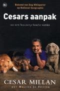 Bekijk details van Cesars aanpak