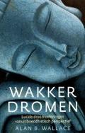 Bekijk details van Wakker dromen