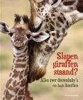 Bekijk details van Slapen giraffen staand?