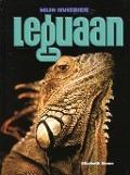 Bekijk details van Leguaan