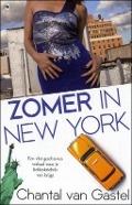 Bekijk details van Zomer in New York