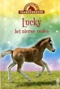 Bekijk details van Lucky, het nieuwe veulen