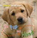 Bekijk details van Van pup tot hond
