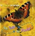 Bekijk details van Van rups tot vlinder